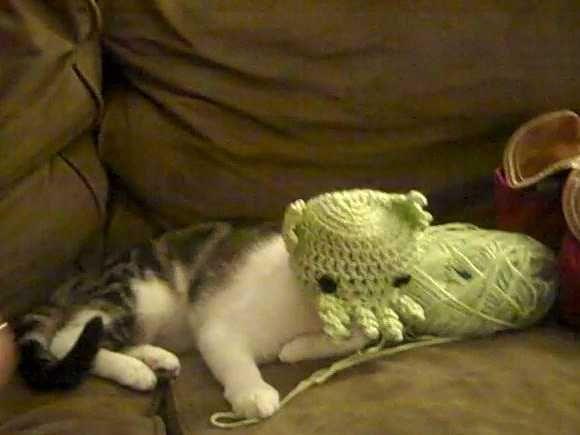 1350794284-0 クトゥルフな猫のハロウィンコスチューム 画像