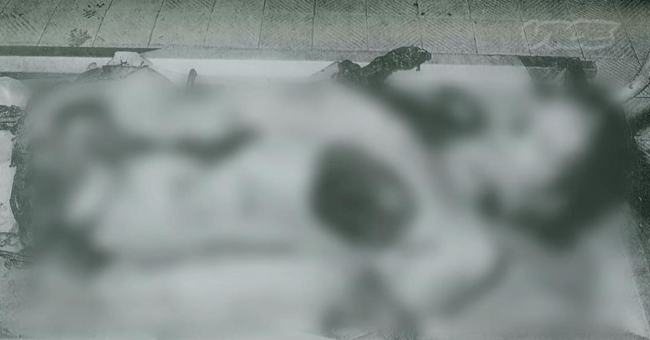 "s 【閲覧注意】佐川一政が遂に""パリ人肉事件""の真相を語る【カニバリズム】 動画"